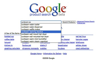google product search.jpg